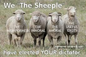 Sheepleimages