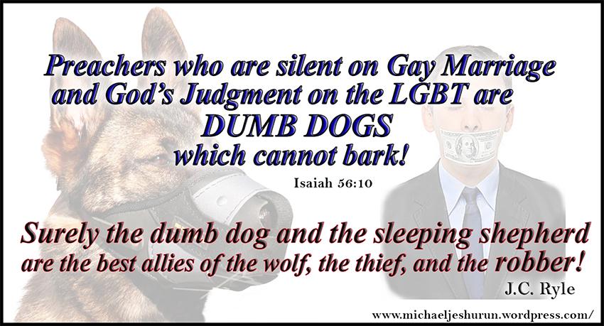 lgbt-dumb-dogs1